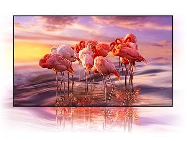 Samsung QLED 4K Smart TV Q80T