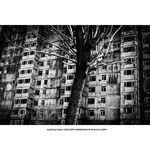 leica-m-monochrom-aparat-foto-rangefinder-digital-negru-37544-8-227