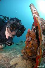 liquid-image-wide-angle-scuba-series-hd319-marime-l-ochelari-subacvatici-cu-camera-foto-video-hd-28264-2