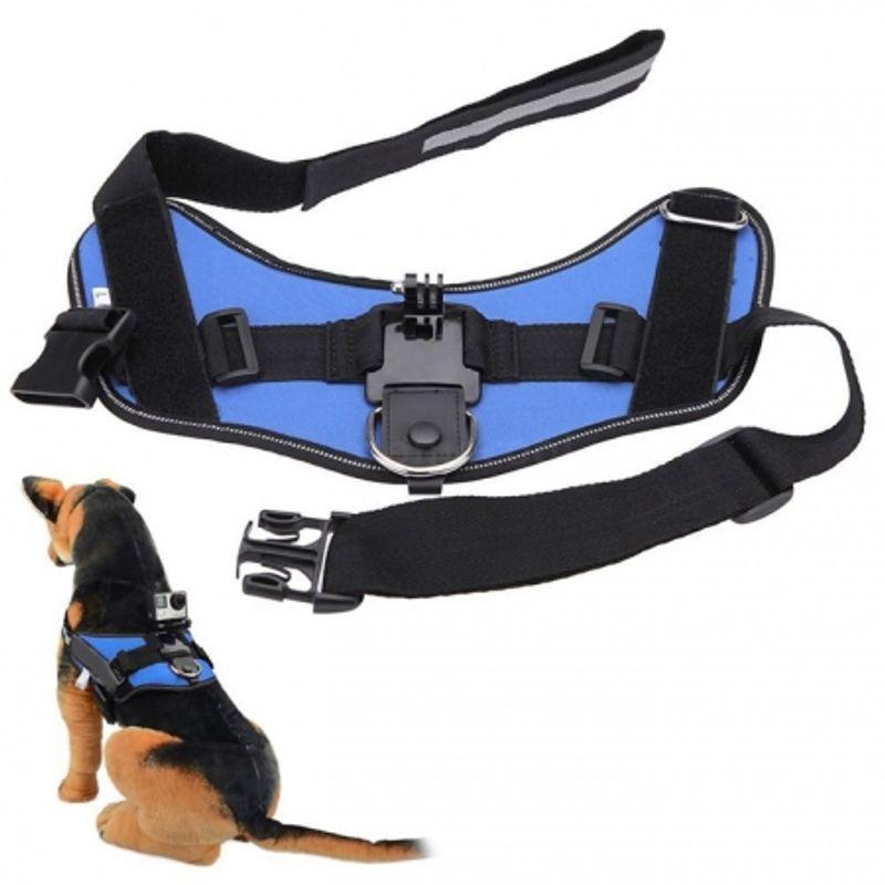 kathay-gopro-dog-harness-strap-albastru-46462-686
