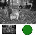 filtru-hoya-hmc-yellow-green-x0-72mm-9093-5