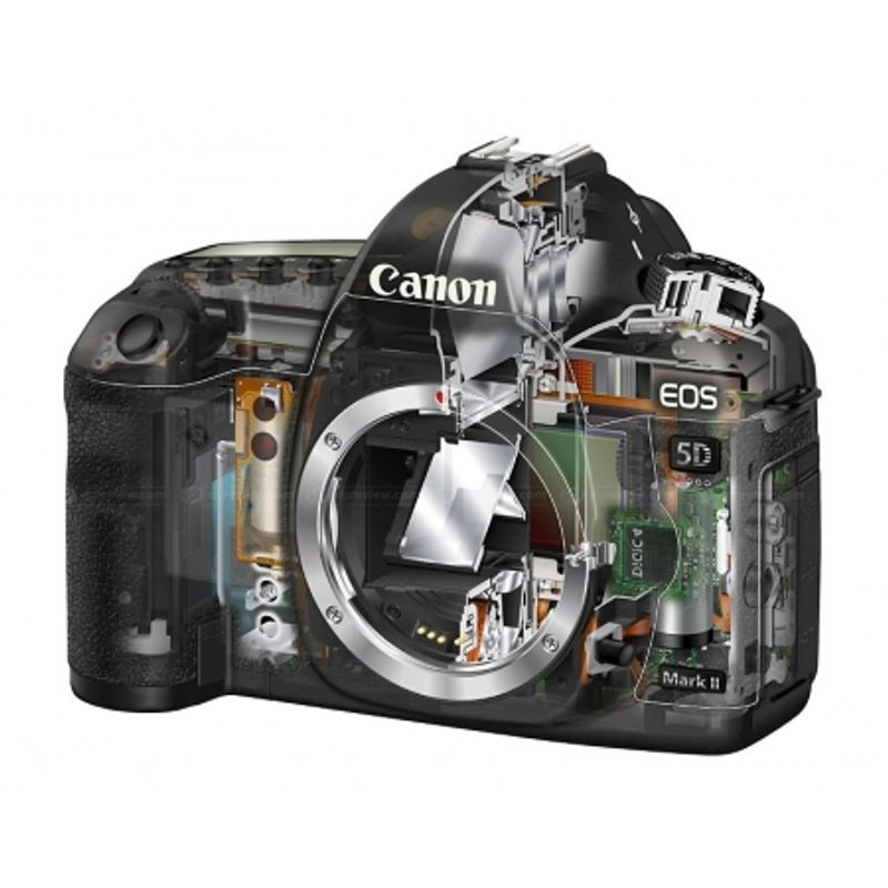 canon-eos-5d-mark-ii-kit-ef-24-105mm-f-4-l-is-usm-ef-50mm-1-4-transcend-cf-64gb-speed-60mb-sec-rucsac-caselogic-promo-ianuarie2012-20821-5