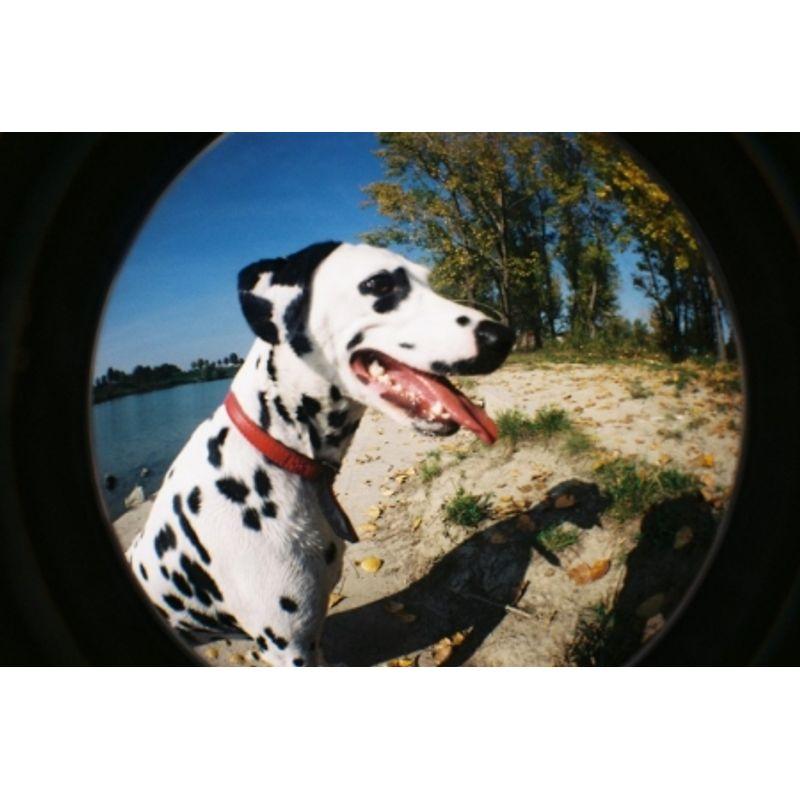 lomography-fisheye-no-2-negru-aparat-pe-film-cu-obiectiv-fisheye-27608-9