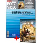 chip-foto-video-septembrie-2012-carte-fotografia-wildlife-23940