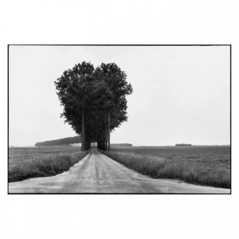 magnum-landscape-28356-6