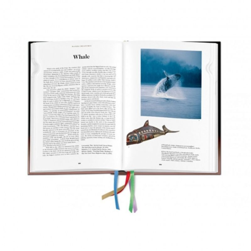 the-book-of-symbols--reflections-on-archetypal-images-28476-6