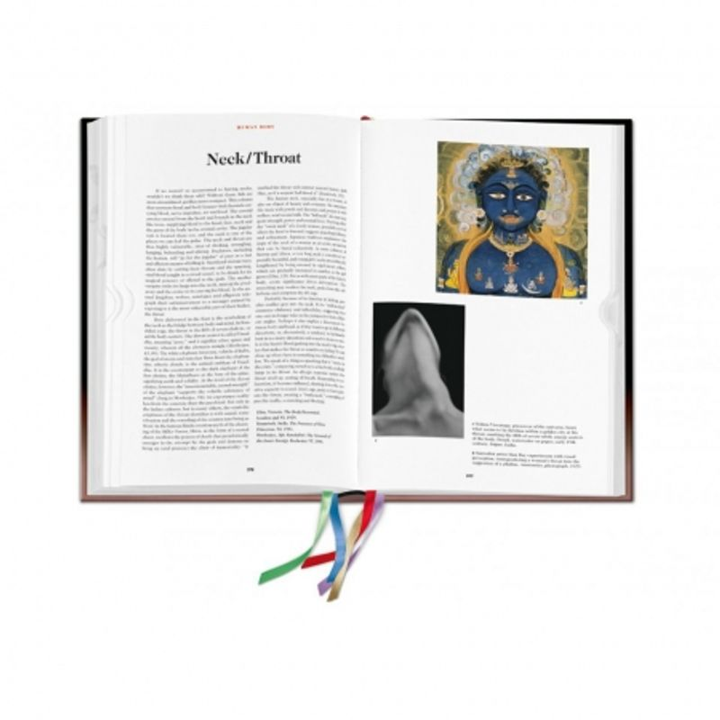the-book-of-symbols--reflections-on-archetypal-images-28476-8