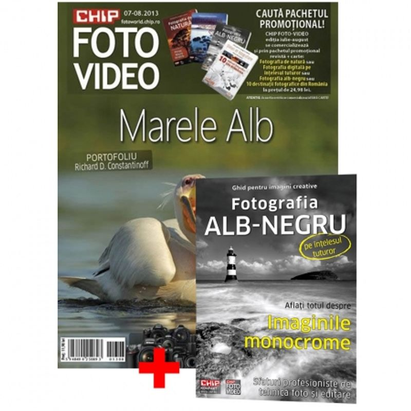 chip-foto-video-iulie-august-2013-carte---fotografia-alb-negru-pe-intelesul-tuturor---28968