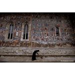 wide-angle--national-geographic-greatest-places--collectors-series--40306-1-31