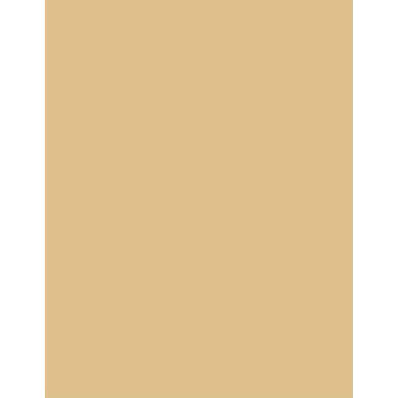 colorama-fundal-carton-2-75-x-11m-barley-38246-408