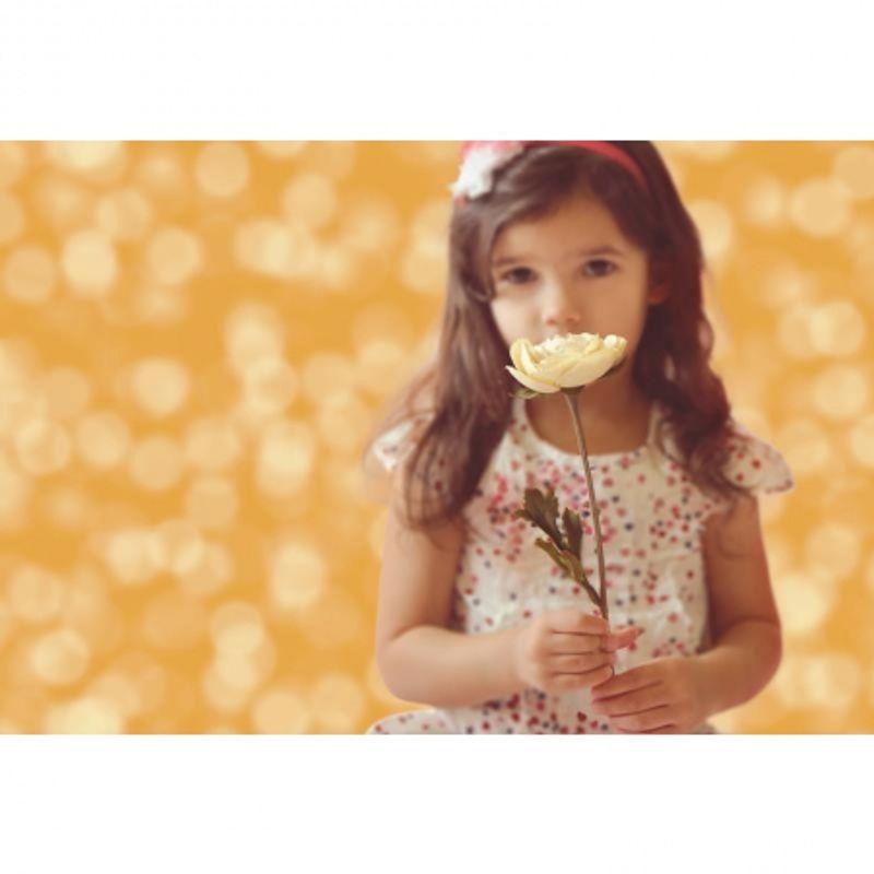 creativity-backgrounds-p2523-ella-bella-bokeh-gold-fundal-1-22-x-3-65m-46076-1-771
