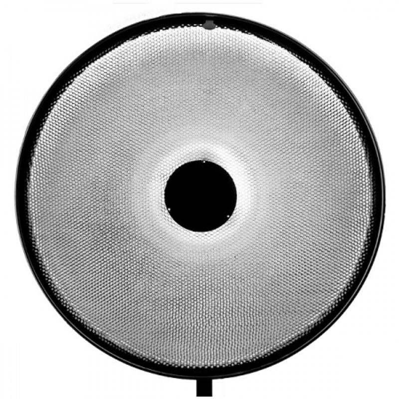 grid-70cm-pentru-beauty-dish-49761-1-431