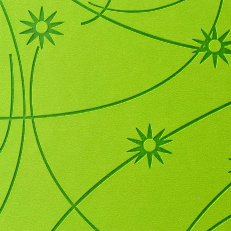 carcasa-cd-dvd--piele-eco--model-colorat-verde-52332-3-597