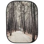 lastolite-perspective-fundal-1-5x2-1m-stone-steps-winter-trees-50725-2-861