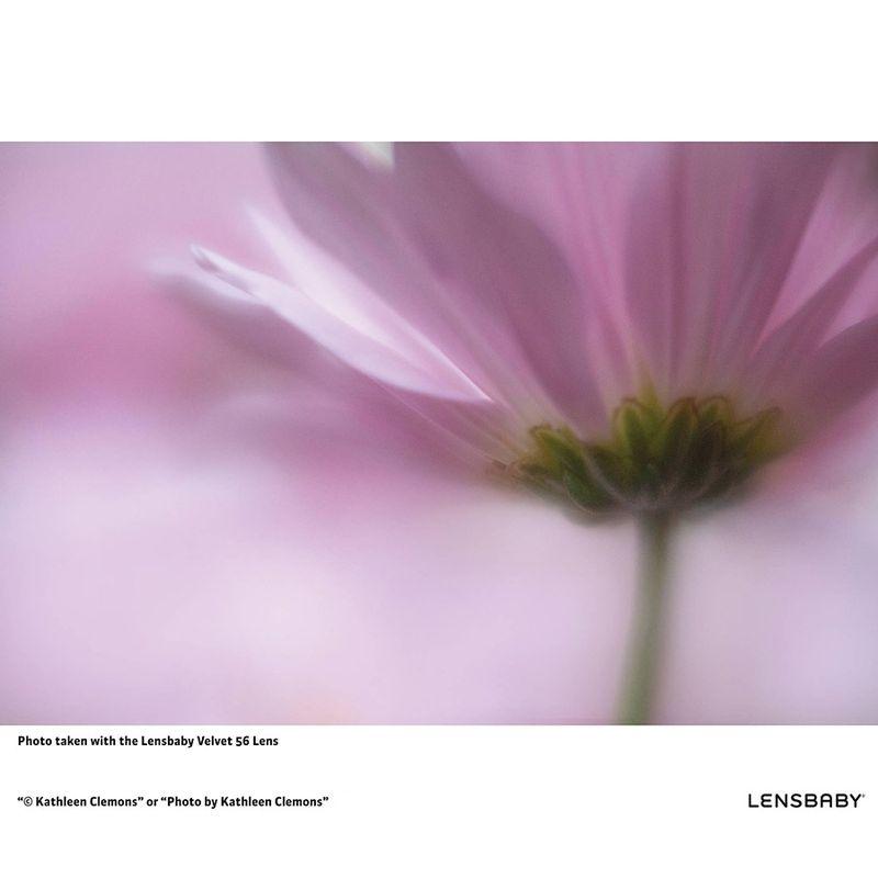 lensbaby-velvet-56-f-1-6-fuji-x-51432-3-314