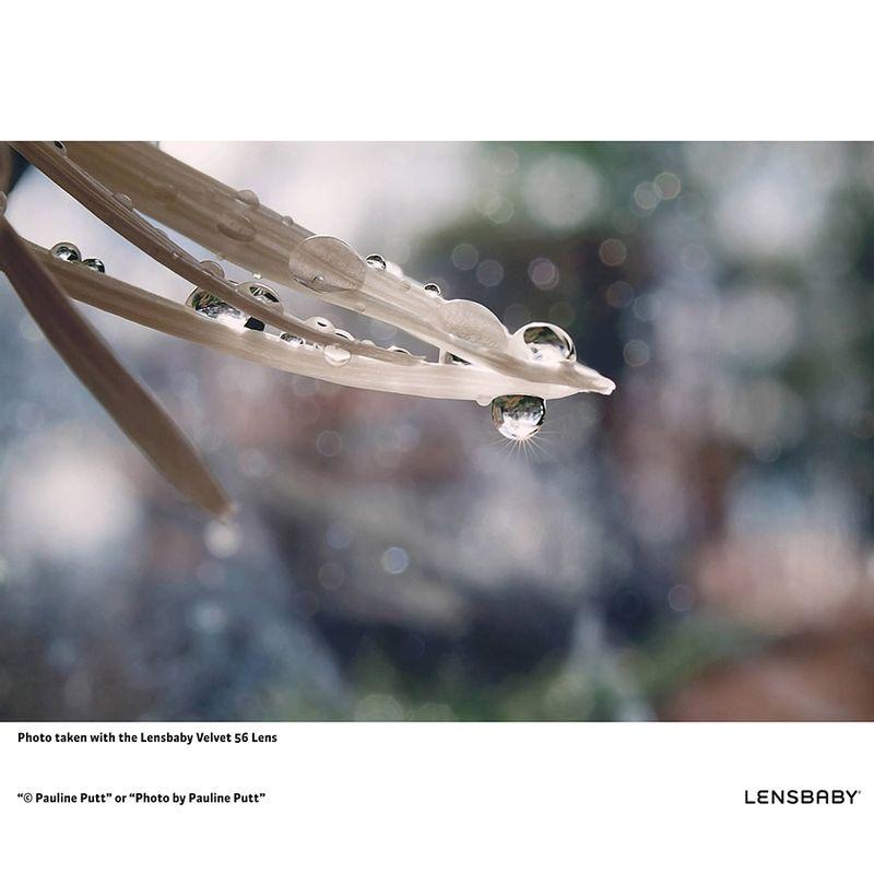 lensbaby-velvet-56-f-1-6-micro-4-3-51433-1-553