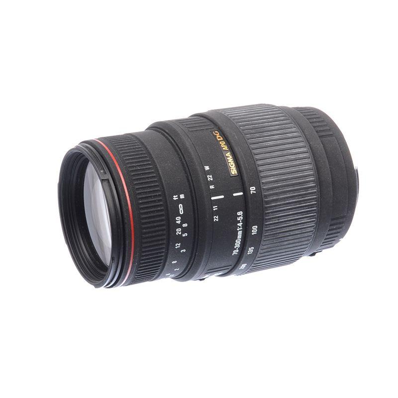 sh-sigma-70-300mm-f-4-5-6-dg-apo-macro-canon-sh125036195-62675-1-345