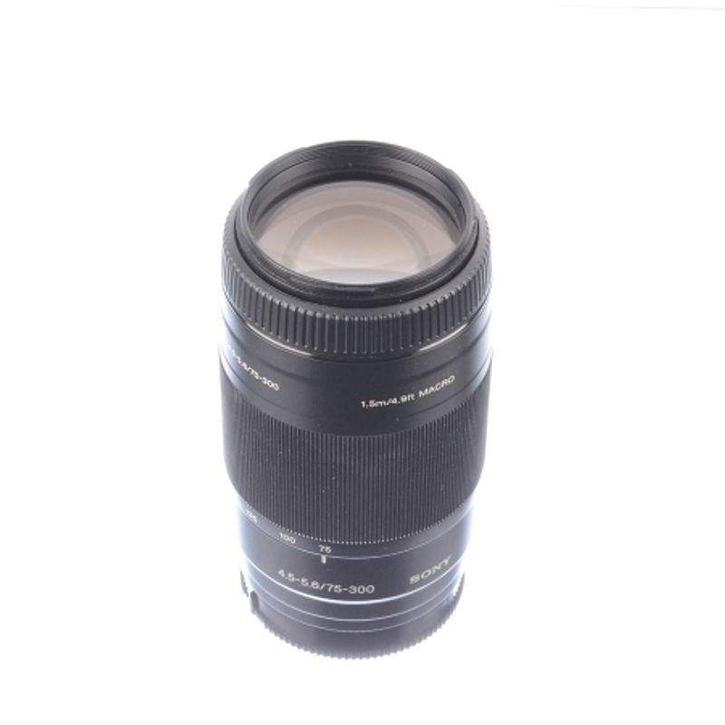 sony-75-300mm-f-4-5-5-6-pt-sony-alpha-sh7240-3-63531-265