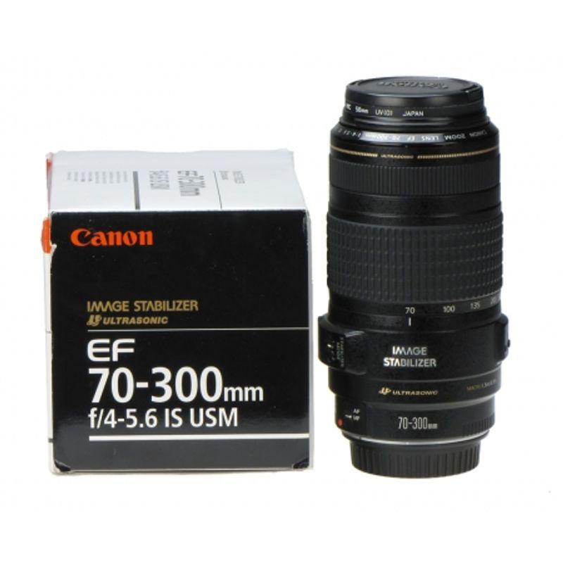 canon-ef-70-300mm-f-4-5-6-is-usm-stabilizare-de-imagine-filtru-hoya-uv-0-hmc-58mm-9253