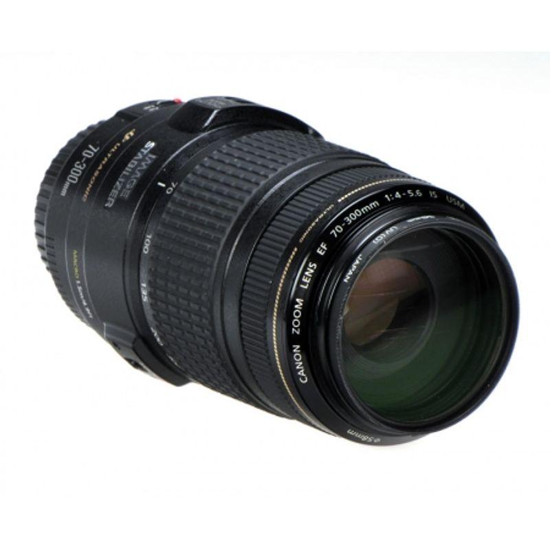 canon-ef-70-300mm-f-4-5-6-is-usm-stabilizare-de-imagine-filtru-hoya-uv-0-hmc-58mm-9253-1