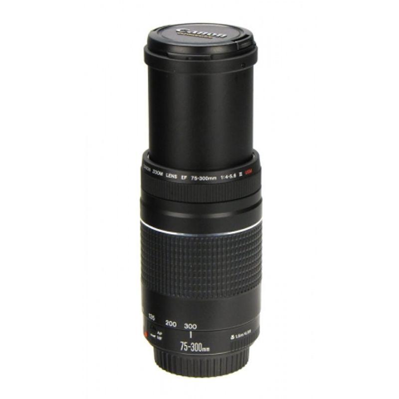 canon-ef-75-300mm-f-4-5-6-iii-usm-10633-4