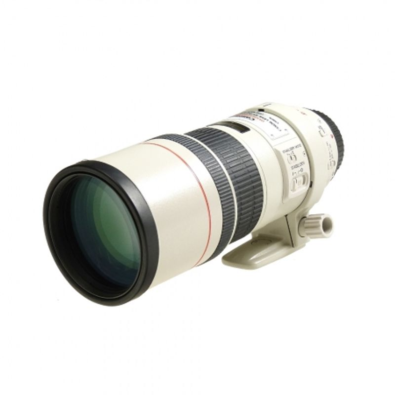 canon-ef-300mm-f-4-l-is-sh5633-1-41055-1-556