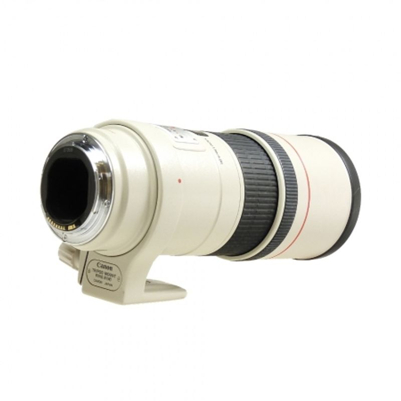 canon-ef-300mm-f-4-l-is-sh5633-1-41055-2-345