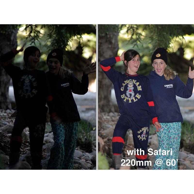 Safari-Before-After-Deep-Shade