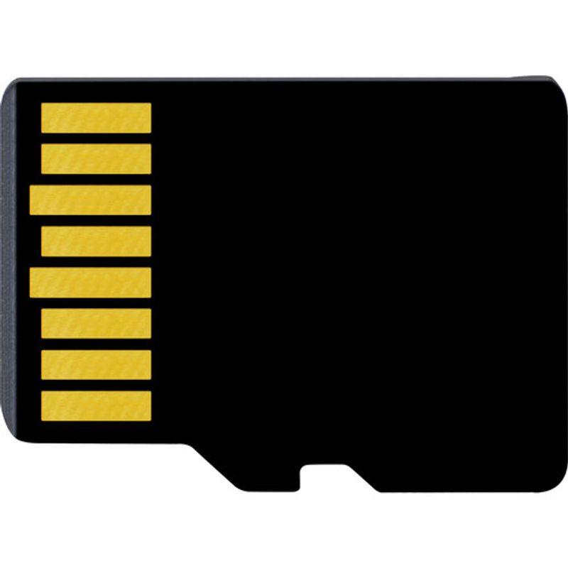 Delkin-MicroSDXC-256GB--2-