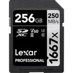 Lexar-High-Performance-1667x-256GB