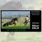 Curs foto pentru incepatori - Nikon cu Radu Grozescu