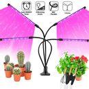 Kathay LED Grow Light Lampa Crestere Plante cu 4 Brate Flexibile