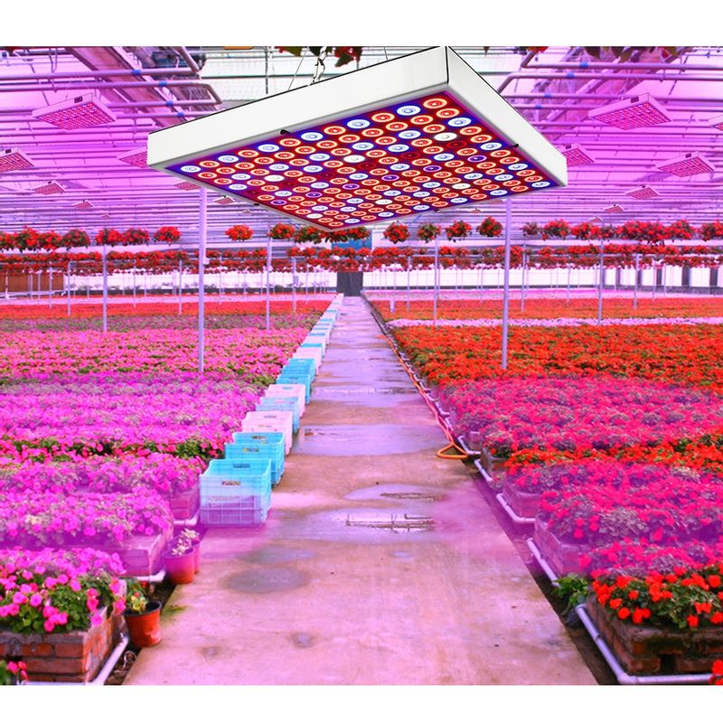 Kathay-LED-Grow-Light-Lampa-Crestere-Plante-45W-03